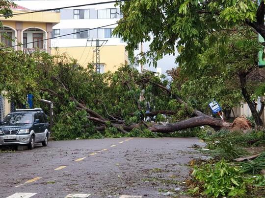 Bình Định: Ngổn ngang sau cơn bão số 5 - Ảnh 5.