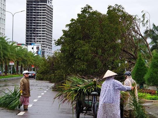 Bình Định: Ngổn ngang sau cơn bão số 5 - Ảnh 7.