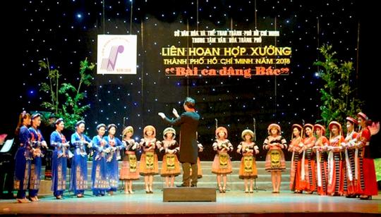 Lấy ý kiến về 13 sự kiện văn hoá, nghệ thuật, lễ hội của TP HCM - Ảnh 8.
