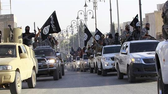 """Thổ Nhĩ Kỳ không phải là """"khách sạn"""" của tay súng IS  - Ảnh 1."""