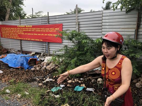 Bắt nữ giám đốc Công ty Angel Lina vẽ dự án ma ở TP HCM - Ảnh 2.