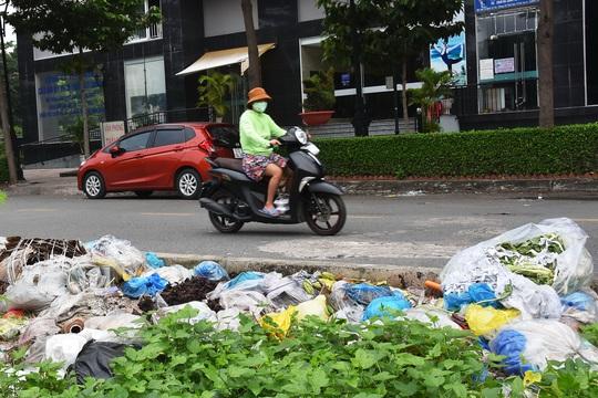 Giá thu gom rác ở TP HCM sẽ tăng cao - Ảnh 1.