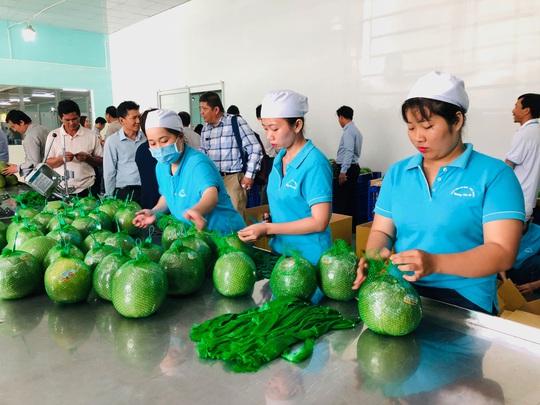 Đưa hàng Việt vào thị trường Thái - Ảnh 1.
