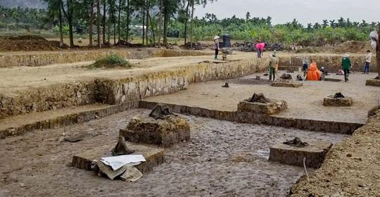 Phát hiện bãi cọc quý hàng ngàn năm tuổi ở Hải Phòng - Ảnh 1.