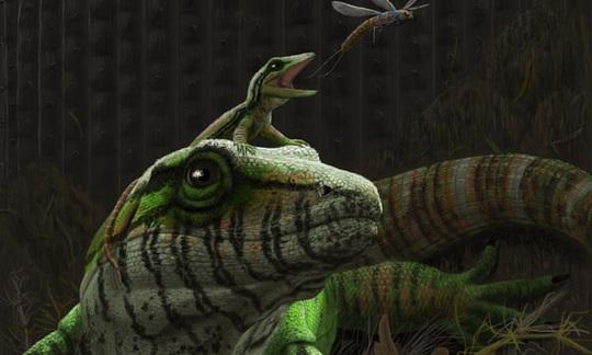 Bí ẩn 2 quái vật 309 triệu tuổi quấn lấy nhau mà hóa đá - Ảnh 2.