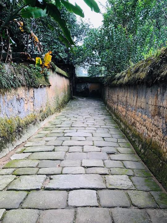 Ngắm vẻ đẹp huyền bí, cổ kính của ngôi chùa ngàn tuổi Bổ Đà - Ảnh 3.
