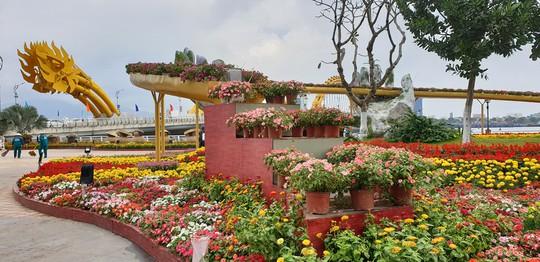 Cầu Vàng rực rỡ tại đường hoa Đà Nẵng - Ảnh 10.