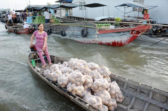 Chợ nổi lớn nhất miền Tây tấp nập nông sản những ngày giáp Tết  - Ảnh 8.