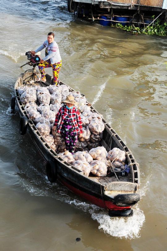 Chợ nổi lớn nhất miền Tây tấp nập nông sản những ngày giáp Tết  - Ảnh 12.