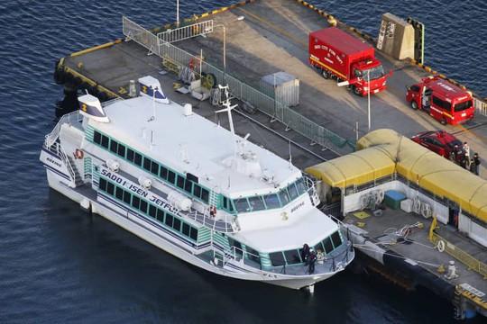 Nhật Bản: Phà cao tốc tông... cá voi, gần trăm người bị thương - Ảnh 1.