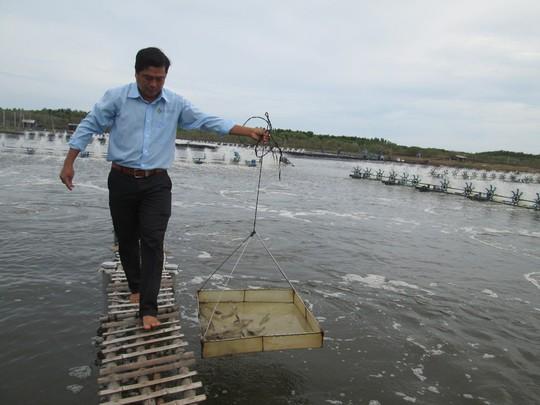 Mỹ công bố thuế chống bán phá giá tôm Việt Nam còn 0% - Ảnh 1.