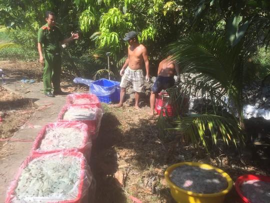 Ớn lạnh 700 kg ruột heo hôi thối sắp được đưa vào quán nhậu ở miền Tây - Ảnh 1.