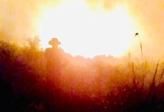 Cháy kinh hoàng suốt đêm, hàng chục hecta rừng phòng hộ ra tro - Ảnh 2.