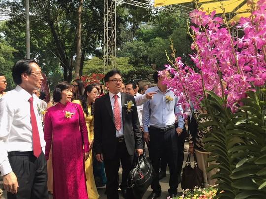 Festival Hoa lan TP HCM khai mạc, miễn phí cho khách tham quan - Ảnh 1.