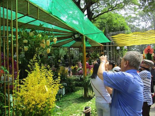 Festival Hoa lan TP HCM khai mạc, miễn phí cho khách tham quan - Ảnh 2.
