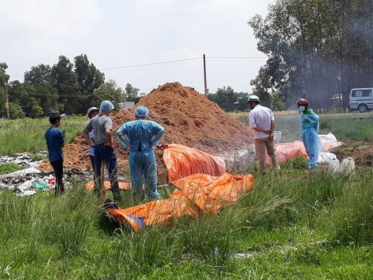 Khởi tố một vụ giết mổ, tàng trữ lợn nhiễm dịch tả heo châu Phi - Ảnh 1.