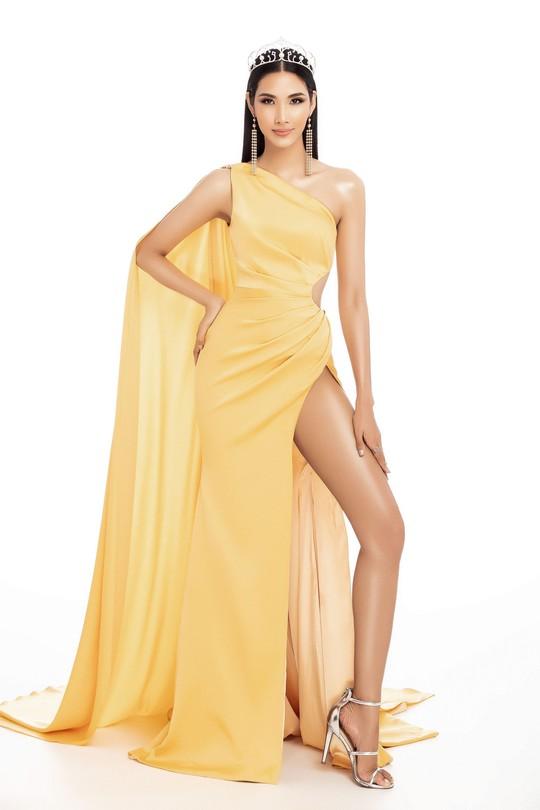 Tranh cãi về nhan sắc Việt thi Hoa hậu Hoàn vũ 2019 - Ảnh 2.