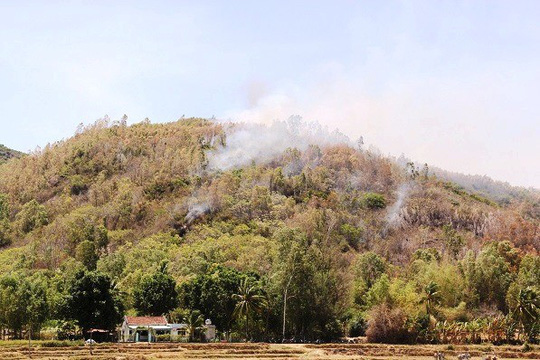 Bom, đạn nổ vang trời trong đám cháy rừng ở Bình Định - Ảnh 1.