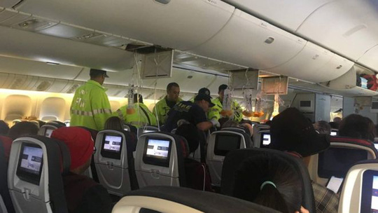 Máy bay hạ cánh khẩn, 37 người bị thương - Ảnh 1.