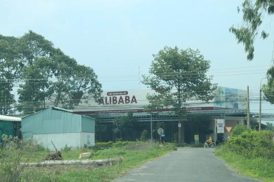 Thêm 1 dự án công ty Alibaba rao bán đất nền bị cưỡng chế sáng mai - Ảnh 3.