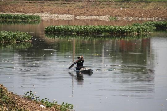 Đến bao giờ cá mới ngừng chết tại các hồ điều tiết Đà Nẵng? - Ảnh 2.