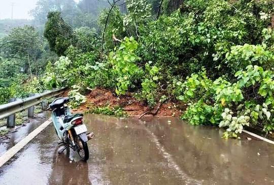Lâm Đồng: Mưa lớn gây sạt lở đất, cô lập nhiều nơi - Ảnh 6.