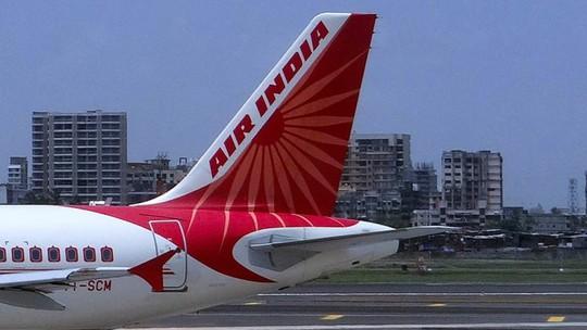 Vòi rồng diệt hàng ngàn con ong cho máy bay Air India cất cánh - Ảnh 1.