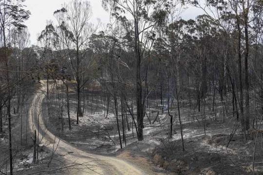 """Xe chở lính cứu hỏa Úc bị """"thần lửa"""" nuốt trọn - Ảnh 3."""