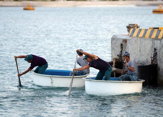 Những ngư dân đón Tết giữa trùng khơi - Ảnh 11.