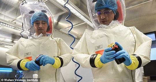 Virus Vũ Hán bắt nguồn từ phòng thí nghiệm Trung Quốc? - Ảnh 1.