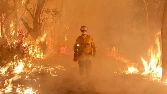 Cháy rừng ở Úc: Tình người trong thảm họa - Ảnh 1.