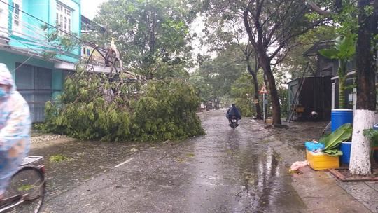 Bão số 9: Đà Nẵng cúp điện nhiều nơi, cây cối ngã đổ - Ảnh 2.