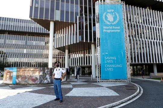 Giải Nobel Hòa bình 2020: Vinh danh nỗ lực chống nạn đói - Ảnh 1.
