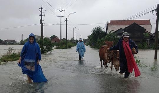 Phú Yên: Vội vã chạy lũ sau bão số 12 - Ảnh 5.