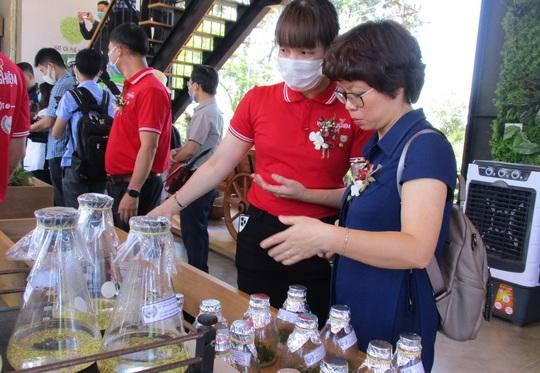 Nhà thu mua cà phê lớn nhất Việt Nam mở khu trải nghiệm cà phê ở Tây Nguyên - Ảnh 1.