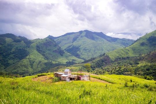 45 du khách TP HCM và người dẫn đường mất liên lạc trên núi Khánh Hòa - Ảnh 2.