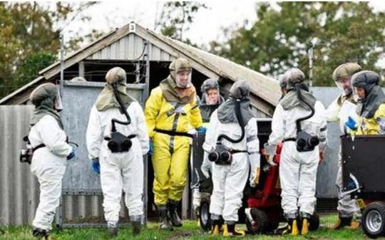 Thủ tướng Đan Mạch lệnh tiêu hủy quần thể chồn khi virus SARS-CoV-2 đột biến lây sang người - Ảnh 2.