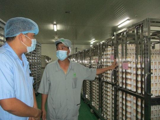 Đại gia thịt gà Thái Lan mở nhà máy hiện đại nhất ở Việt Nam - Ảnh 3.