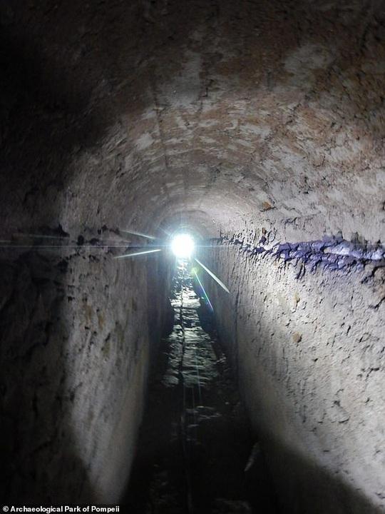 Sốc với thứ duy nhất sống sót trong thành phố bị núi lửa chôn vùi 2.000 năm - Ảnh 3.