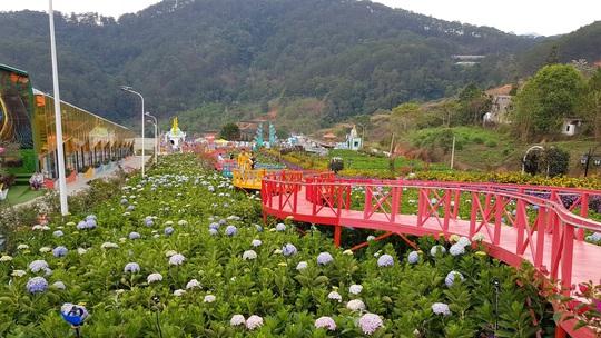 Cận cảnh vườn thượng uyển bay khổng lồ không phép ngay cửa ngõ Đà Lạt - Ảnh 9.