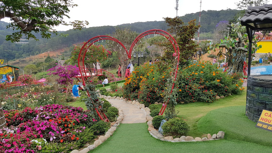 Cận cảnh vườn thượng uyển bay khổng lồ không phép ngay cửa ngõ Đà Lạt - Ảnh 7.