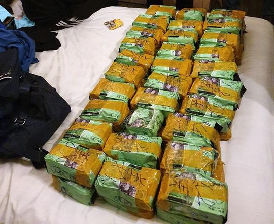 Huy động hàng trăm cảnh sát triệt phá đường dây buôn bán ma túy xuyên quốc gia, thu 446 kg ma túy - Ảnh 1.