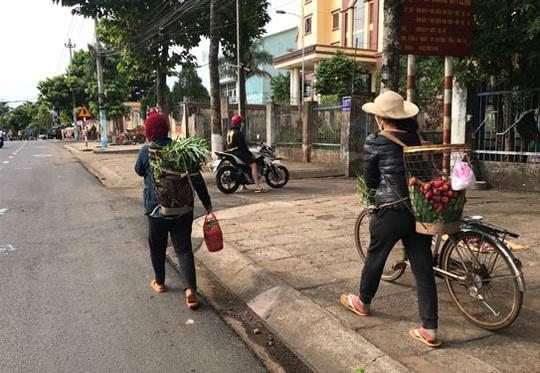Chợ sạch từ núi rừng - Ảnh 1.