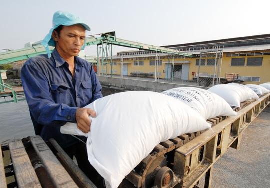 Địa phương bắt bẻ Bộ Công Thương vì sao lại áp hạn ngạch xuất khẩu gạo? - Ảnh 1.