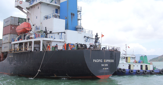 Tông chìm tàu cá, tàu hàng Pacific Express bỏ mặc nạn nhân rơi xuống biển - Ảnh 1.