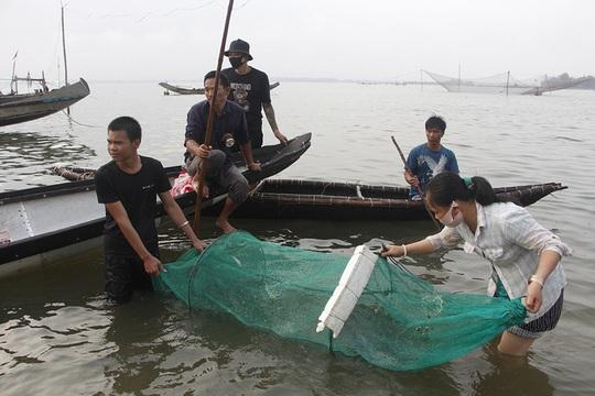 Đàn cá kình con vào sát kè biển Thuận An, nhiều người lao xuống vây bắt - Ảnh 3.