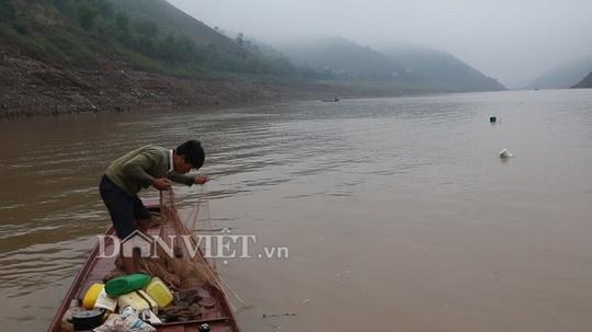 Nín thở theo dấu đàn cá ngon trên sông Đà - Ảnh 1.