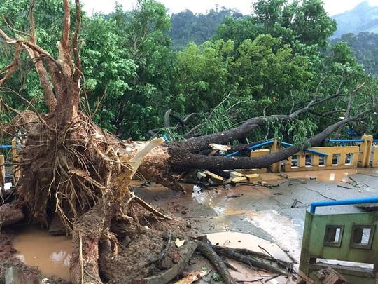 Quảng Nam: Mưa dông kèm lốc xoáy khiến nhiều nhà dân bị tốc mái - Ảnh 6.