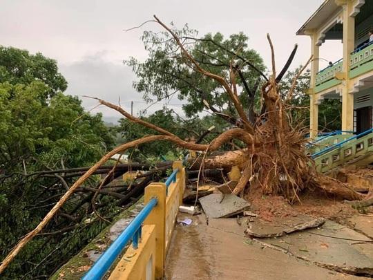 Quảng Nam: Mưa dông kèm lốc xoáy khiến nhiều nhà dân bị tốc mái - Ảnh 8.