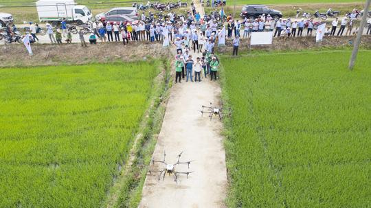 Nông dân xứ Quảng lần đầu thấy phun thuốc bằng thiết bị bay - Ảnh 3.